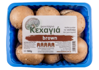 Agaricus Brown